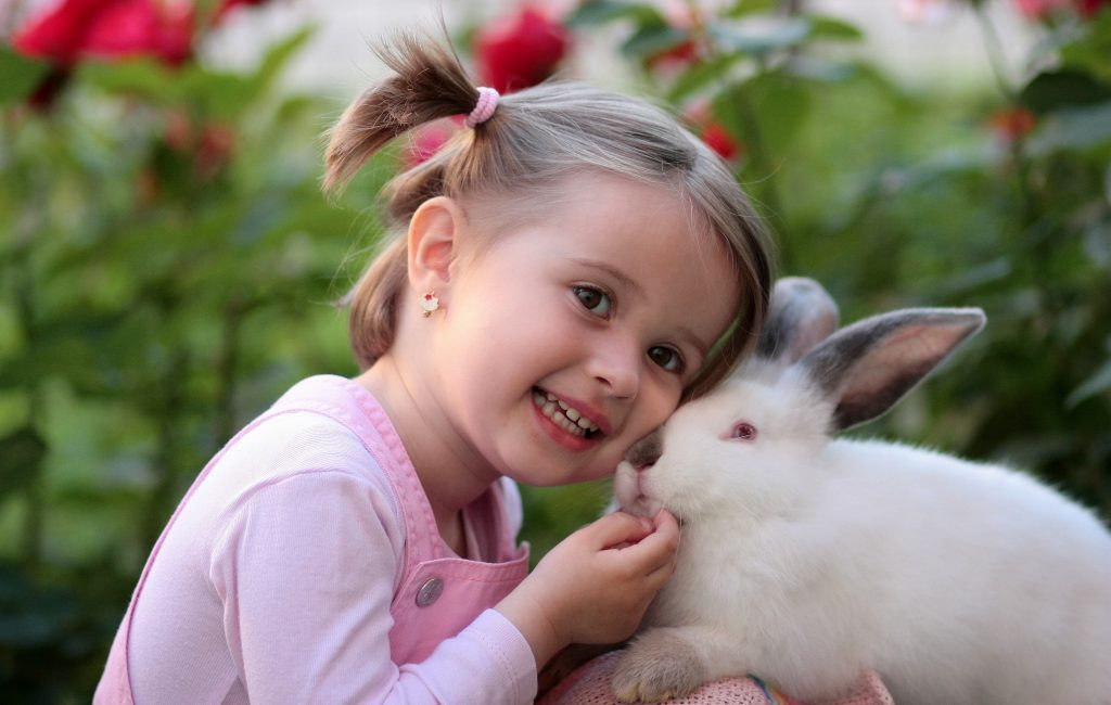Little girl with a white rabbit