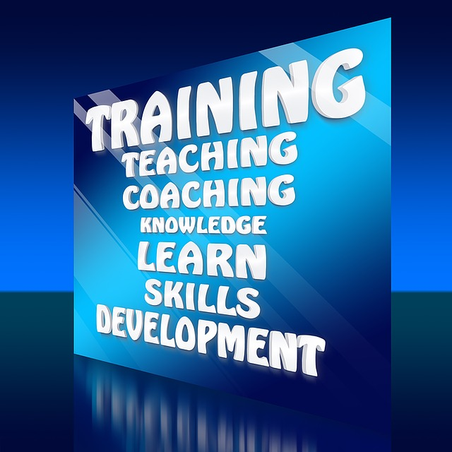 Banner with training, teaching, coaching, knowledge, learn, skills, development across the front
